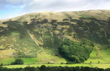【ハート型地形10】イギリスのハート型の森[1].jpg