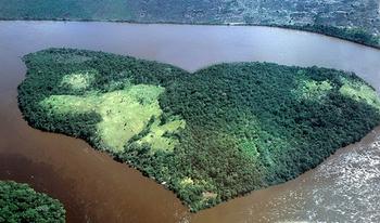 【ハート型地形38】ベネズエラオリノコ川にある森の島1].jpg
