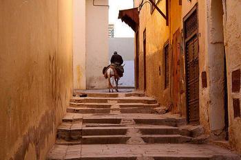 【モロッコ】フェズの迷路。A-o2c.jpg
