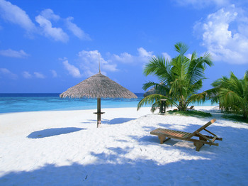 南国の浜.jpg