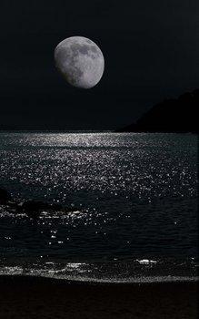 闇夜の月.jpg