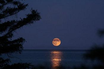 闇夜の月2.jpg