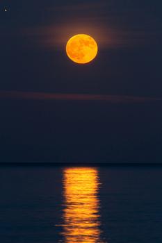 闇夜の月3.jpg